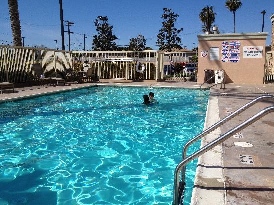 sheraton garden grove anaheim south hotel pool - Sheraton Garden Grove