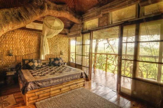 tree house inside rustic tranquil resort inside the treehouse picture of resort kolagapaara