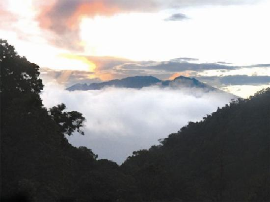 Boquete Tree Trek Mountain Resort: Amanecer