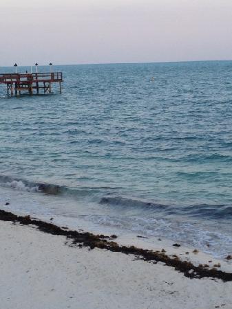 Cabana Breezes: key colony beach