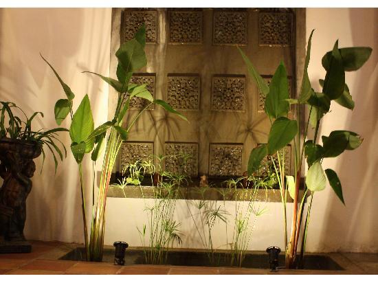 Aqua Boutique Guesthouse: Garden
