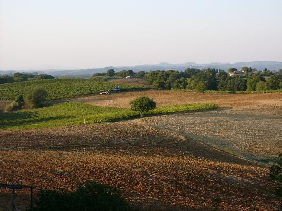 Agriturismo Saletta: ...traumhafte Landschaft