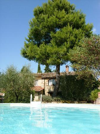 Agriturismo Saletta: ...der Blick vom Pool