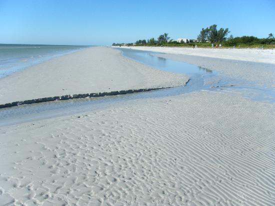 Loggerhead Cay: The sand was gorgeous.