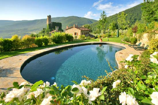 Agriturismo Rocca di Pierle : Panoramic view from the swimming pool.