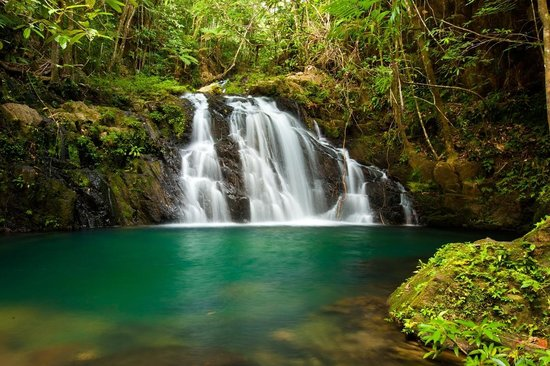 Bocawina Adventures & EcoTours Ltd. : Waterfall in Bocawina National Park