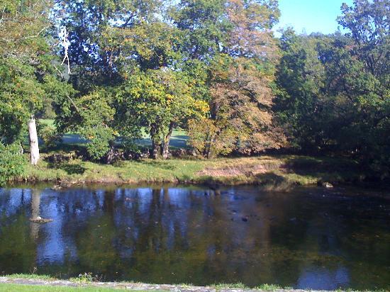 Dolweunydd Bed & Breakfast: Betws-y-Coed River Llugwy