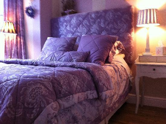 Dolweunydd Bed & Breakfast: Beautiful Superior Room