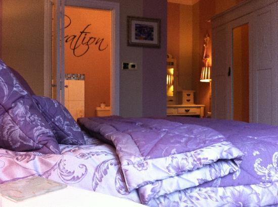 Dolweunydd Bed & Breakfast: Superior Room with en-suite bathroom