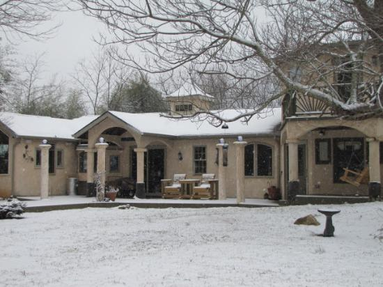 Bella La Vita Inn: Bella in the snow
