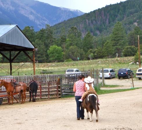 Young Life's Trail West Lodge: Horse and pony rides