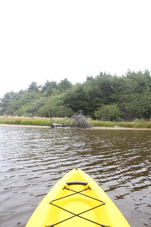 Longview, WA: kayaking through estuary