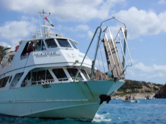 Navetta Sea Star : .....maxi gita