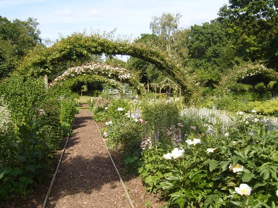 Passford House: Rose arches