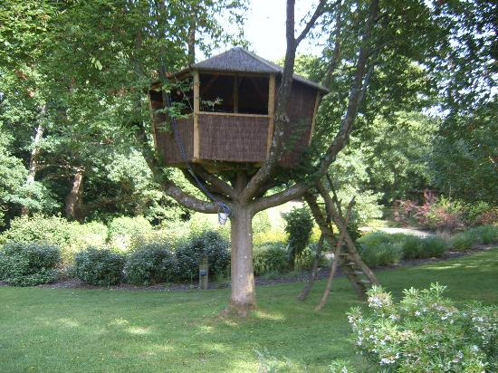 Passford House: Fantastic tree house!!
