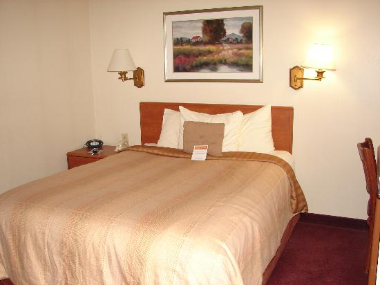 Candlewood Suites Syracuse Airport: Bedroom