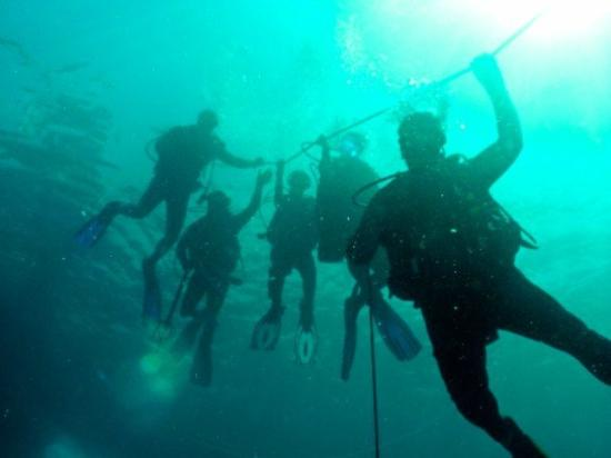 Adventure Scuba Diving : saftey first!