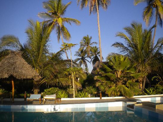 Mitende EasyAfrica Club: la piscina ed il giardino del resort