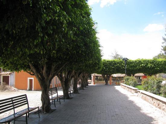 Hacienda Alemana: Mascota
