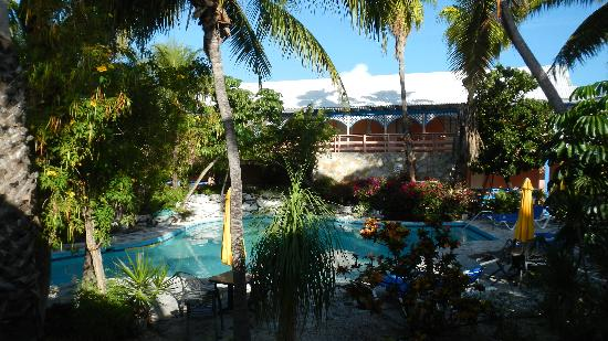 Turtle Cove Inn: Pool