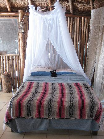 My Tulum Cabanas: Sleeping to the sound of the ocean, waking up to the sounds of the birds...  Heaven!