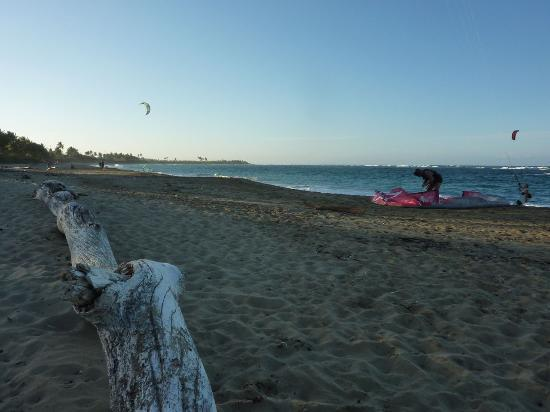 Kite Beach Hotel: Beach