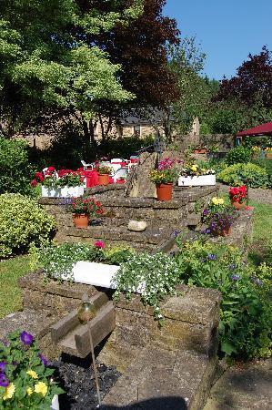 Hostellerie Sainte-Cecile : le jardin