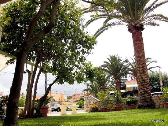 Tropicana Beach Hotel & Suites: The garden