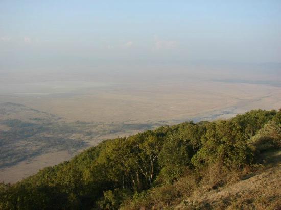 Obszar Chroniony Ngorongoro, Tanzania: Crater View