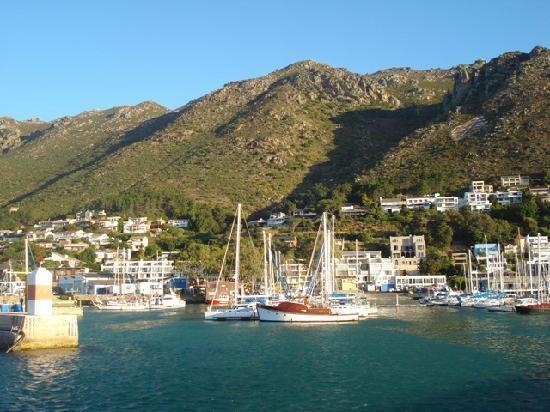 Berg en Zee Guest House: 5 minutes' walk to the harbour