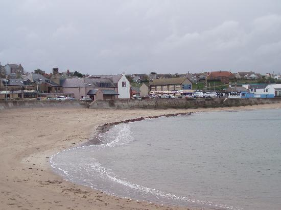 Hillcrest Bed & Breakfast: Eyemouth beach