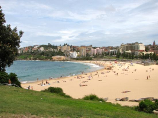 Dive Hotel: Coogee Beach