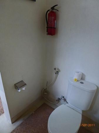 سابا فيلا: not a luxury toilet
