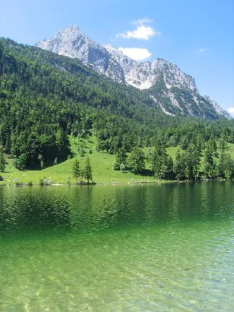 ferchensee im sommer bild von gasthaus ferchensee mittenwald tripadvisor. Black Bedroom Furniture Sets. Home Design Ideas
