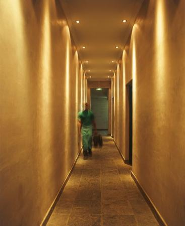 Sugar Hotel & Spa: Main Passage