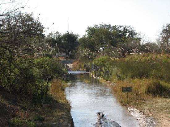 Moremi Wildlife Reserve : Third Bridge