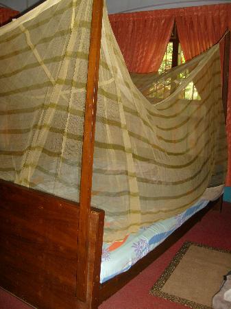 Sona Tourist Home: moustiquaire