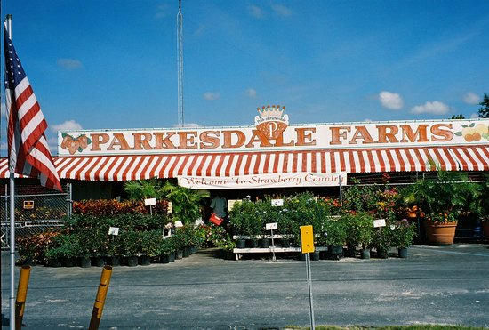 Plant City, FL: Parkesdale Farm Market