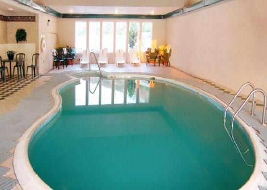 كومفرت إن ماكس ميدوز: Pool
