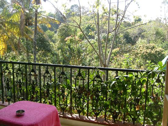 Suresh Green View Homestay: Balcon