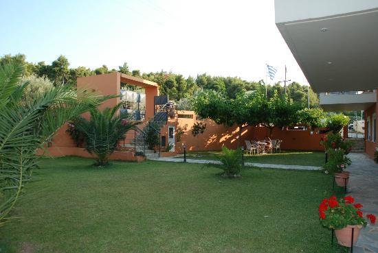 Anemos Studios : Trägården