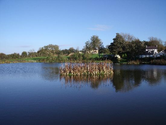 Tyddyn Sargent Coarse Fishery: Across the lake towards the cottages