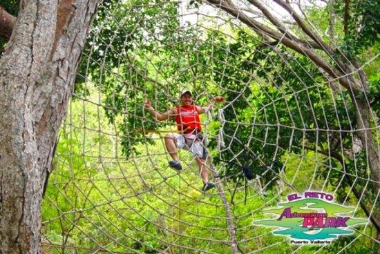 Las Animas Adventure Park: The Spider web