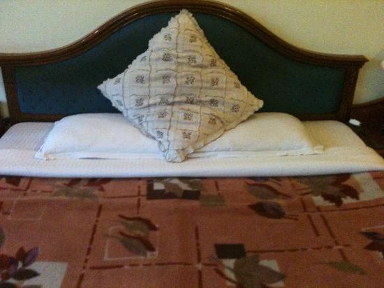 Hotel Leela Regency : The bed and the blanket were of poorest standard