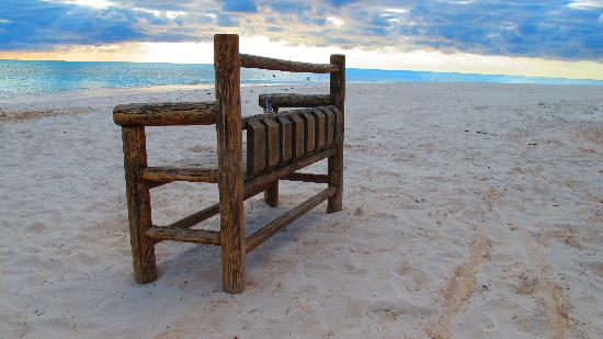 Shannas Cove Resort: The famous bench on our white sand beach