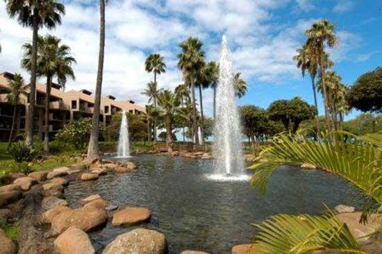 Kamaole Sands: Fountains