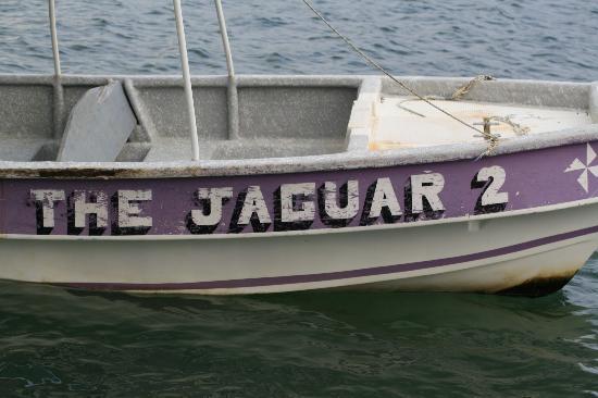 Hostal El Jaguar: Jaguar boat