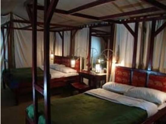 Fig Tree Camp: Guest Room