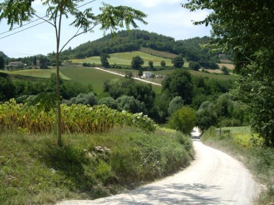 Ristorante Albergo Nene: One of the lanes near Nene