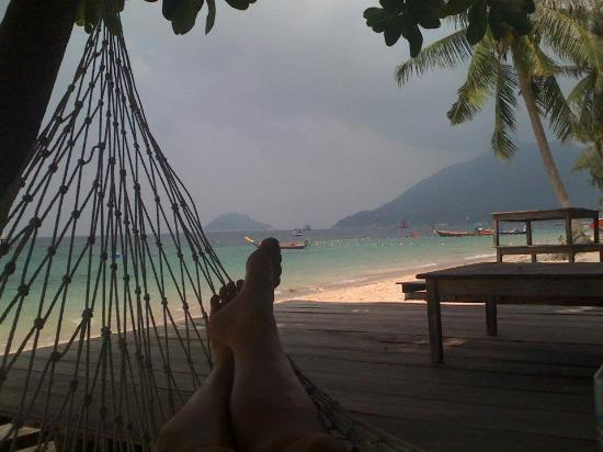 Crystal Dive Resort: hammock in front of resort